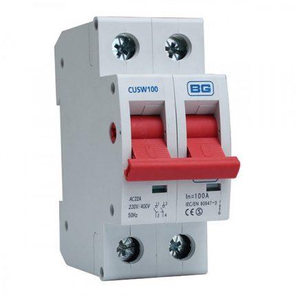 BG Double Pole 100A Main Switch